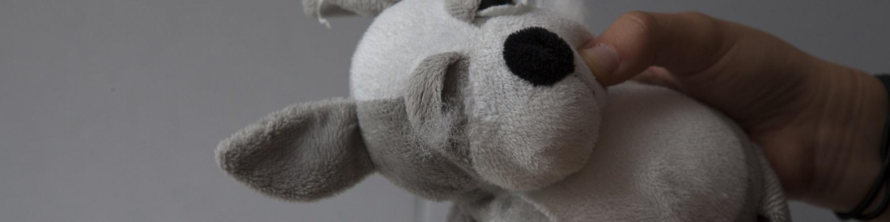 mani tengono un peluche rovinato a forma di cane