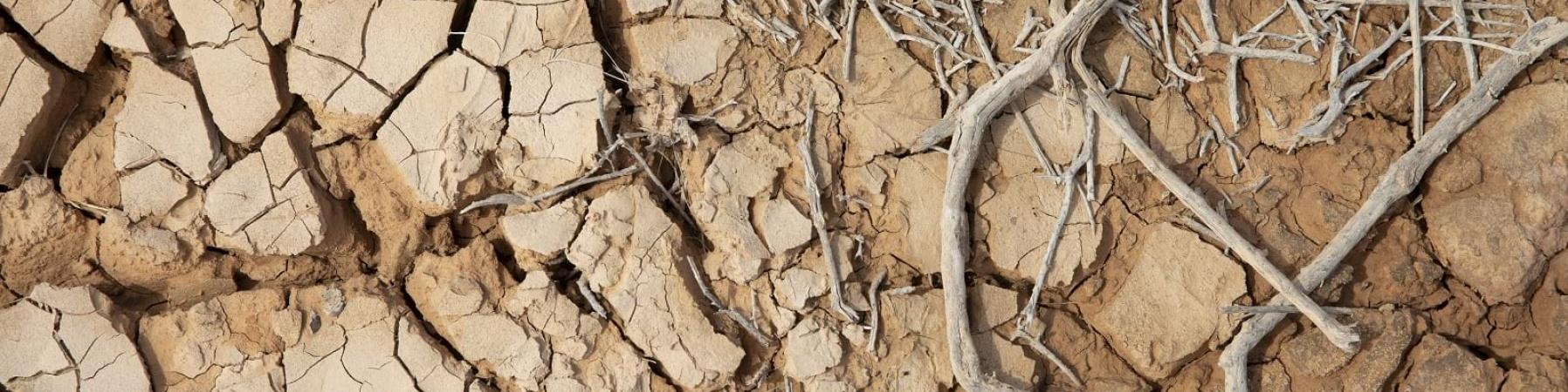 terra seccata dalla siccità