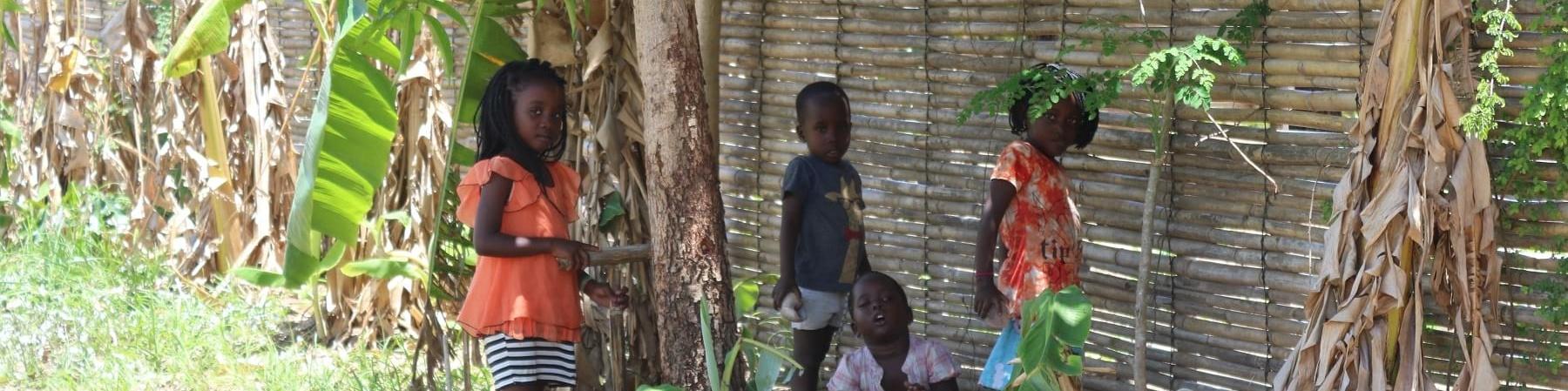 Quattro bambini del mozambico in lontananza sono ripresi mentre giocano nella natura vicino a una parte di canne di bambu.