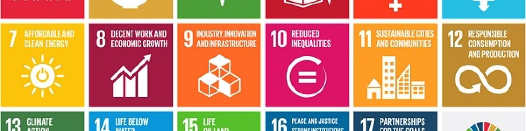 I 17 Obiettivi di Sviluppo Sostenibile