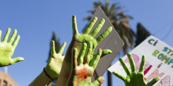 mani colorate di verde che si alzano verso il cielo durante una manifestazione per l'ambiente