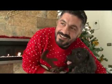 Video Gattuso